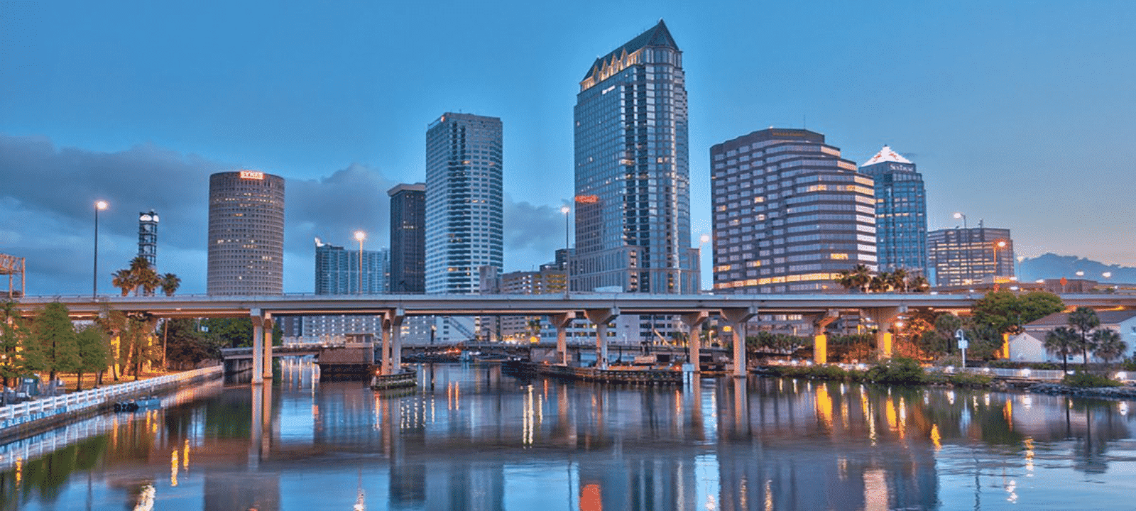 Tampa SEO Agency - SEO Tampa FL