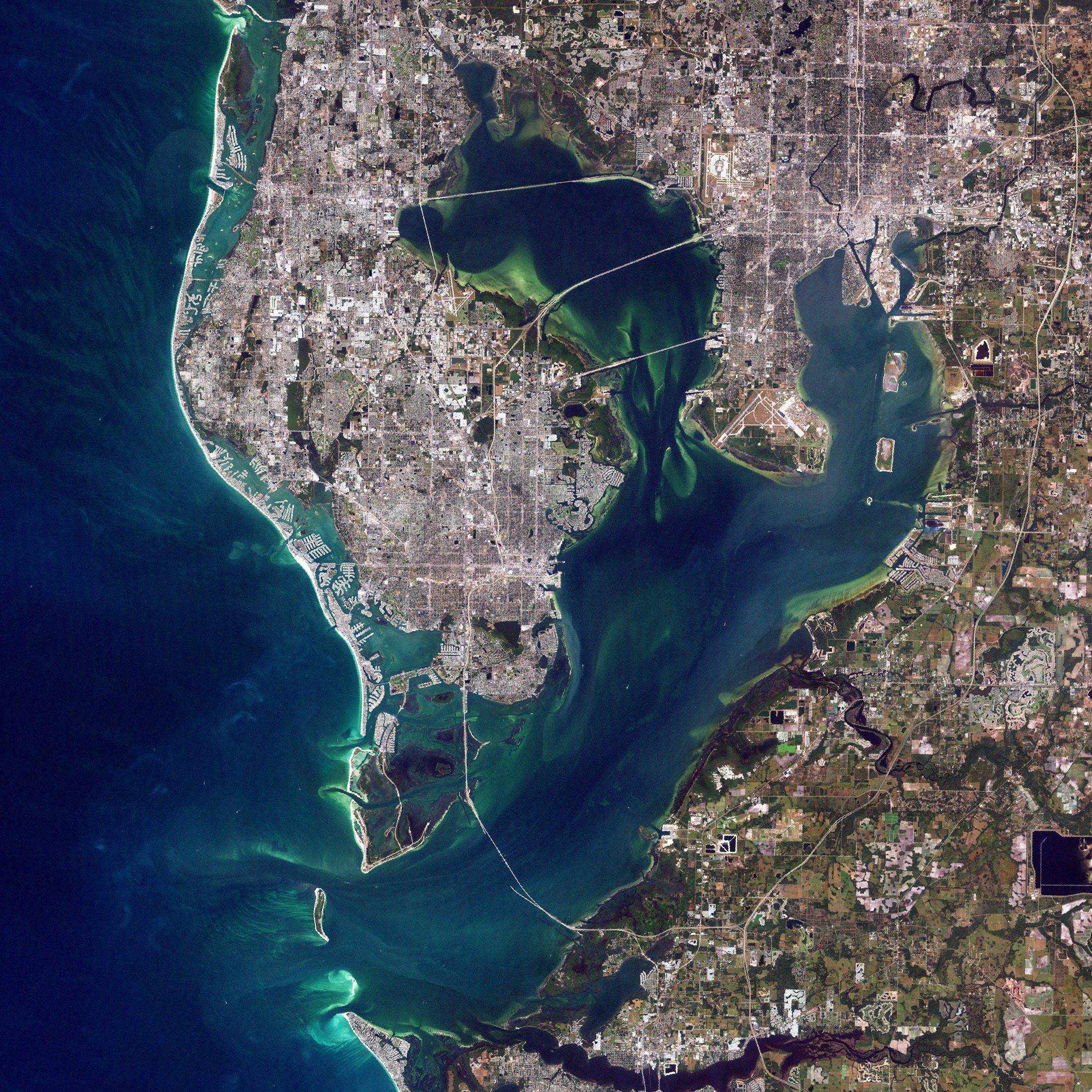 SEO Tampa Bay | Tampa SEO Agency